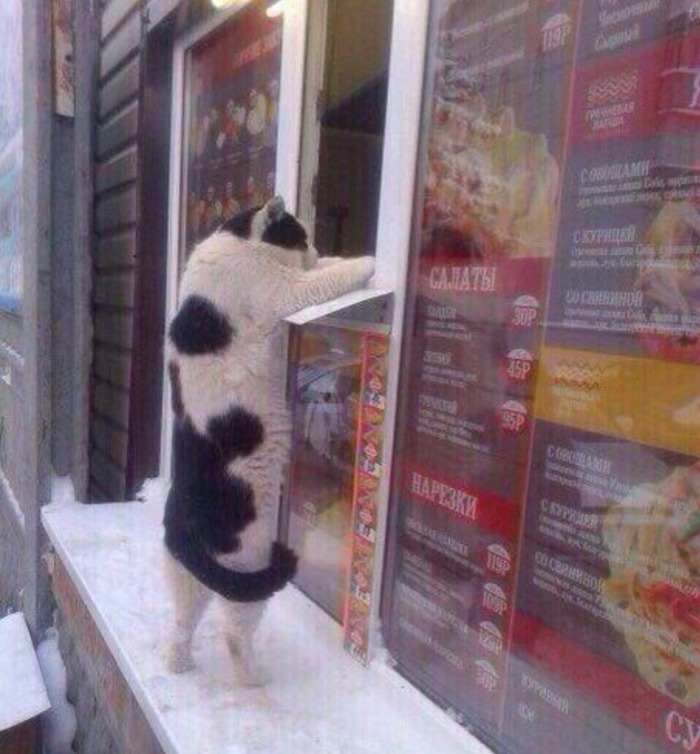 """Extra mouse meat, please"""