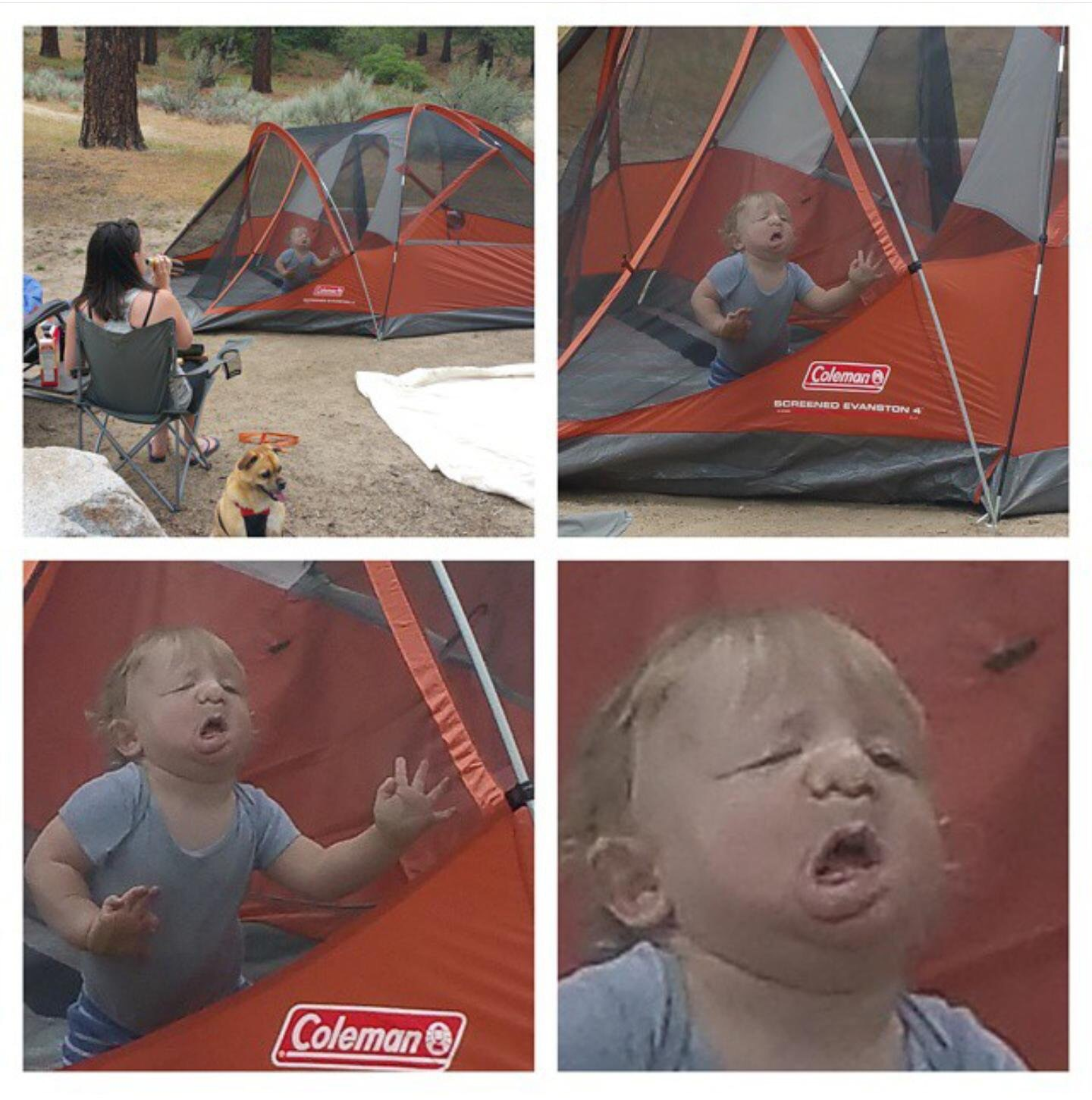 "Another  ""first time I took my kid camping"""